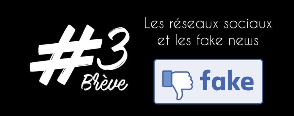 BRÈVE 3 : Les réseaux Sociaux et les Fake News, un cocktail détonnant !